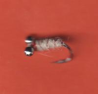 w80 sb white larva