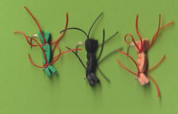 W80 CHERNOBYL ANTS