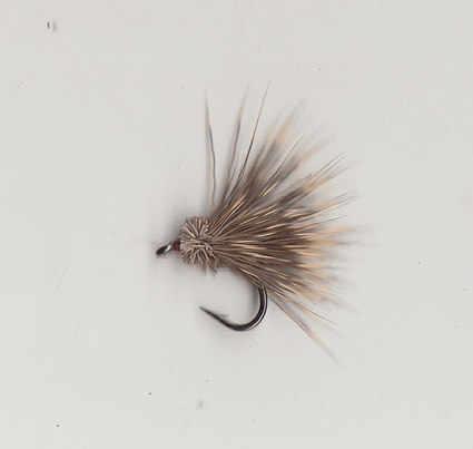 2011 DEER SPIDER #14
