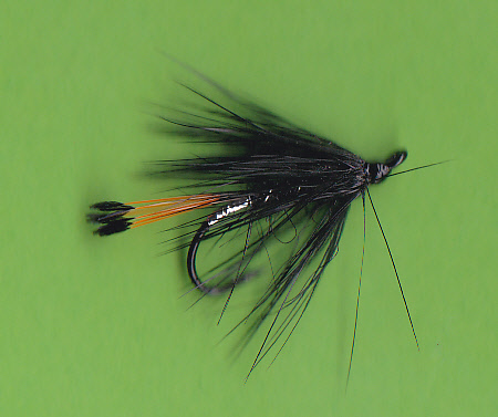 WEB BLK PENNELL LW