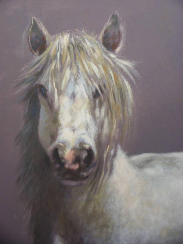 kirk horse study