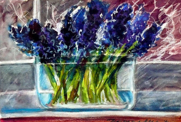 hyacinth in a bowl
