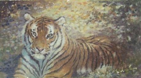 bengal tiger joel kirk new