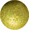 Chartreuse Elixir Cosmetic Mica Powder - 10 grams