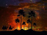 Essence of Arabia
