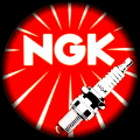 ngk red circ with plug