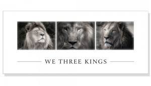 Christmas Cards from Born Free