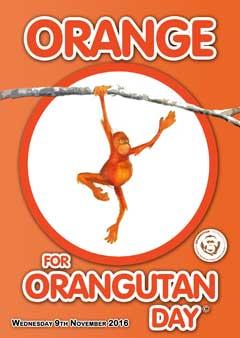 Orange for Orangutan Day 2016