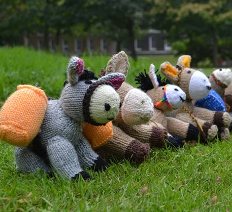 Click here to find out more about SPANA's Big Knit for Vet Kit
