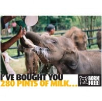 Gifts in Kind from Born Free