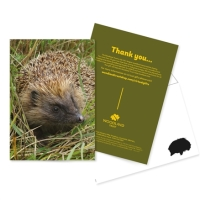Gifts for UK wildlife lovers from the Woodland Trust