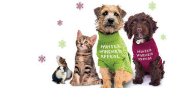 Help Woodgreen with their Winter Warmer Appeal