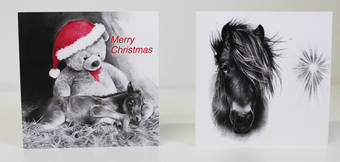 Support the Mare and Foal Sanctuary with your Christmas Card purchase