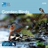 Wildlife Calendars for 2018 from the RSPB