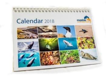 MCS Calendar 2018
