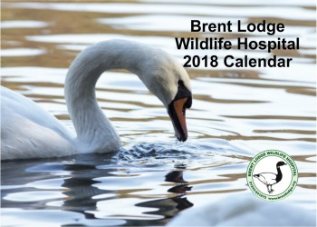 2018 Brent Lodge Calendar
