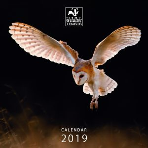 Wildlife Trusts 2019 Calendar