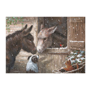 Visit the Donkey Sanctuary to see their range of Christmas cards