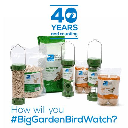 Big Garden Birdwatch starter kit offer