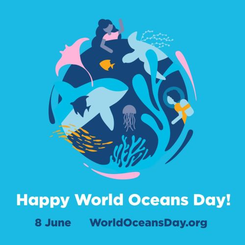 Get ready for World Oceans Day in June 2019