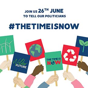 Tell politicians that The Time is Now