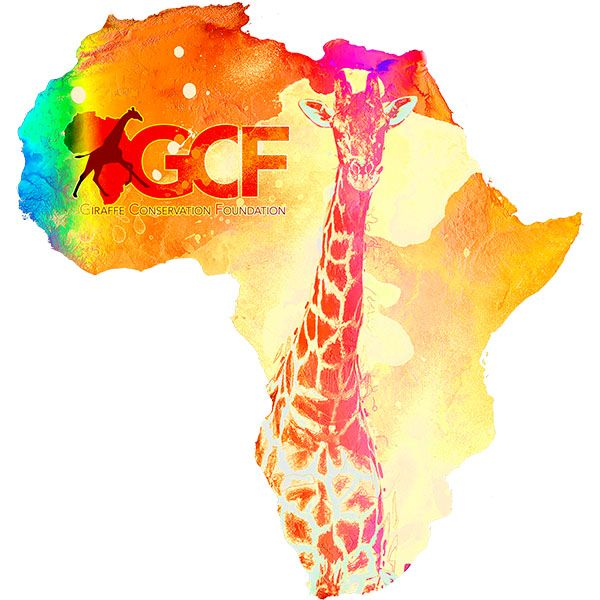 Buy a t-shirt to raise awareness of World Giraffe Day