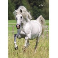 This 2020 Horses Diary is available from Redwings Horse Sanctuary