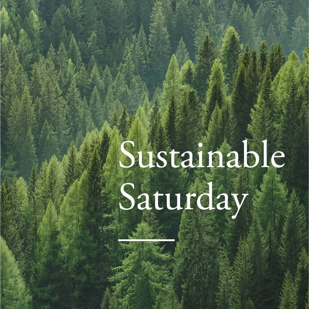 Take part in Sustainable Saturday in 2020