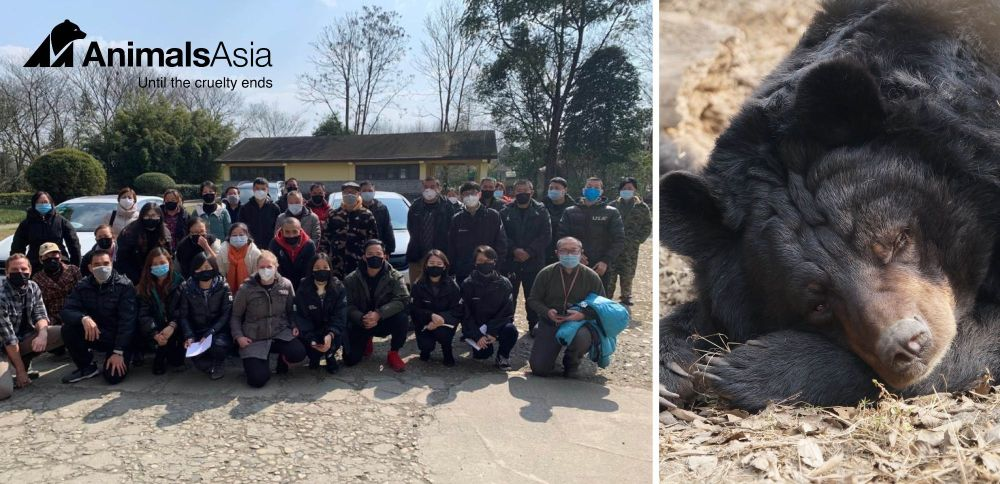These guys looking after the rescued bears in China need your help