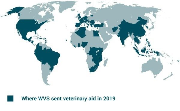 Where WVS sent veterinary aid in 2019