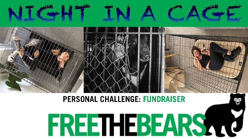 Spend a Night in a Cage and raise funds for Free the Bears to help bears