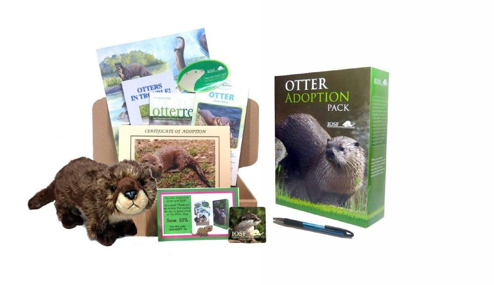 Adopt an otter and help IOSF help otters!
