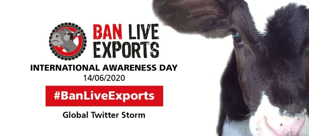 Join in this Ban Live Exports International Awareness Day and show you care