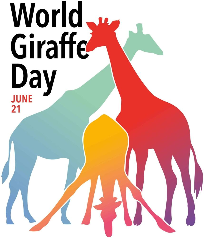 World Giraffe Day is on 21st June