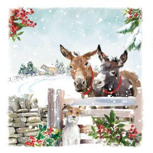 Help SPANA help working animals with your Christmas cards this year