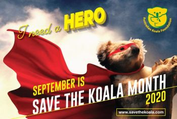 Find out more about Save the Koala Month