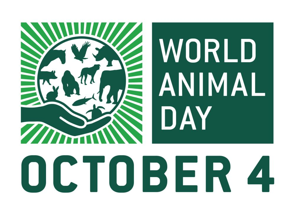 World Animal Day is on 4th October - Find out more