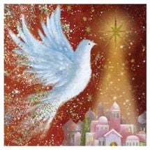 Fly off to see the Christmas cards from the RSPB Online Shop