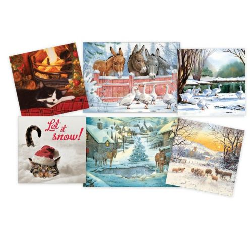 Help SPANA either by buying your Christmas cards or sending e-cards