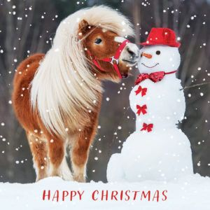This is a cheeky pony Christmas card!