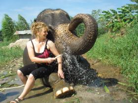 Responsible Travel lists 16 elephant conservation holidays - click here to see them