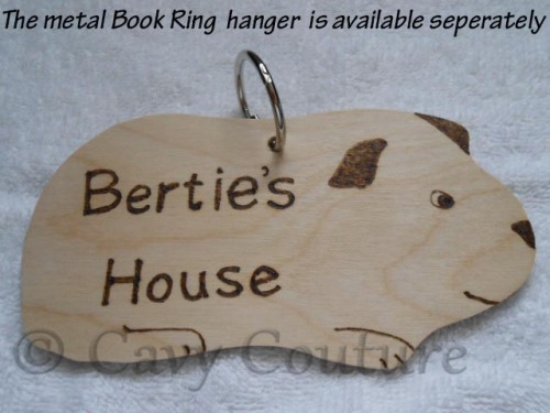 Wooden Guinea Pig shaped personalised cage name plaque