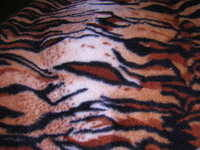 Fleece - Tiger