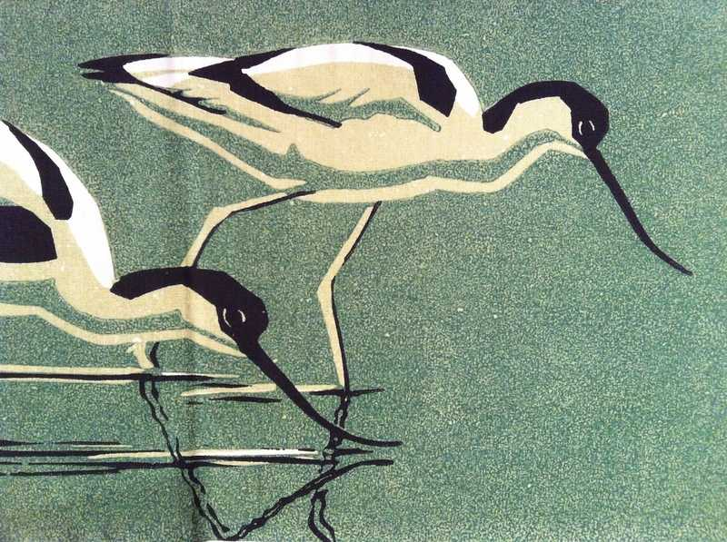 Avocets Detail