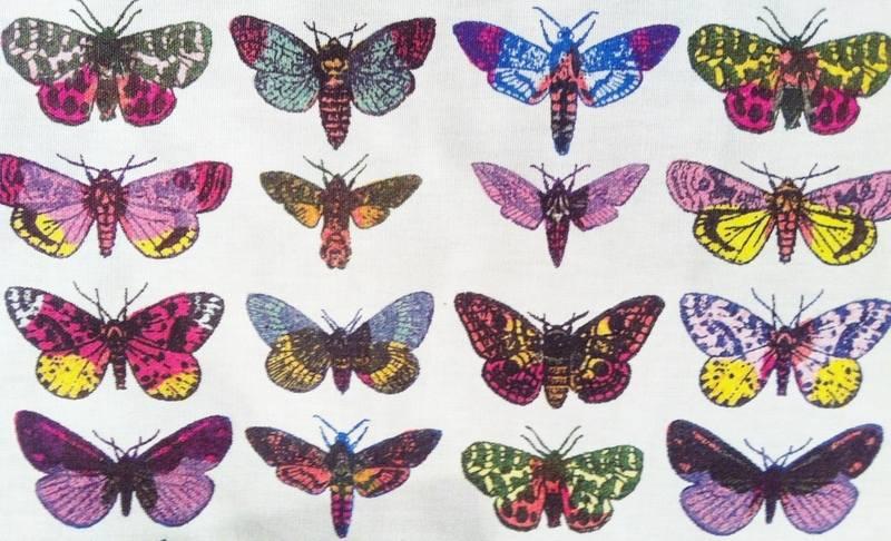 Moths Detail2