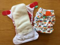 All-in-two nappies - pads  attach to a wrap