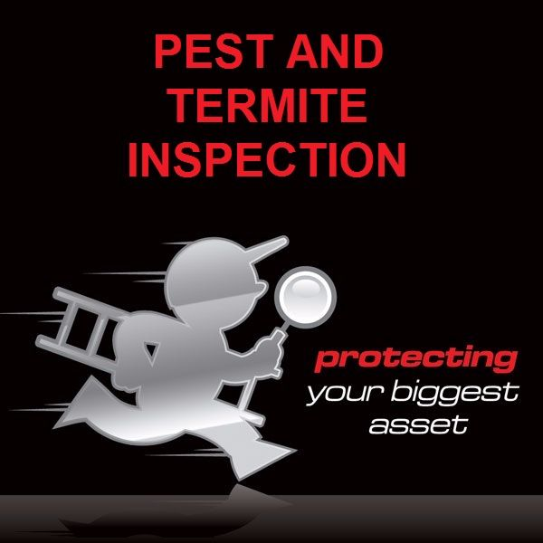 Pest and Termite Inspections Mandurah and Perth