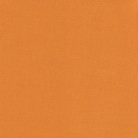Spectrum - Pumpkin N60