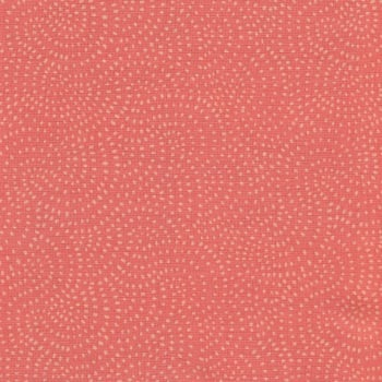 Dashwood Studio's Twist 1155 Coral
