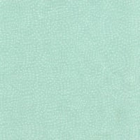 Dashwood Studio's Twist 1155 Mint